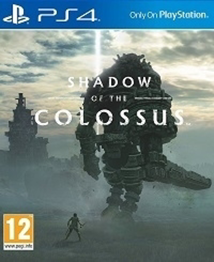 Picture of Shadow of the Colossus - PS4